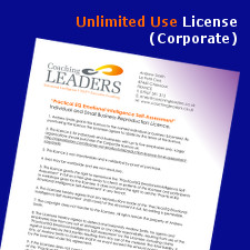EQ Assessment Corporate Licence